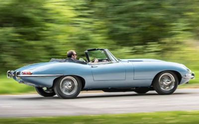 Jaguar: i 60 anni del felino dal muso lungo